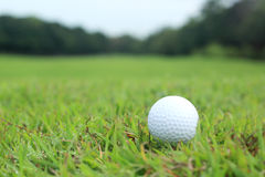 Golf ball lying in the fairway Royalty Free Stock Images
