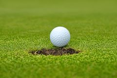 Golf, ball lying on the green next to hole Stock Image