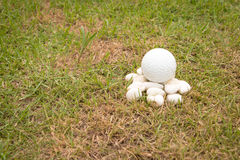Golf ball on mini stone Stock Image