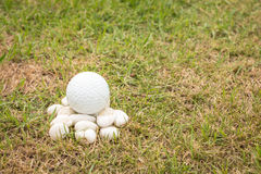 Golf ball on mini stone Royalty Free Stock Photos