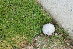 Golf ball near the cart path. Close up dirty golf ball on ground near the cart path Stock Image