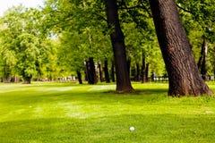 golf ball near the forest royalty free stock photos