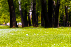 golf ball near the forest stock images