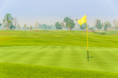 Golf ball near hole on green with yellow flag. With fairway and tree in background Royalty Free Stock Photos