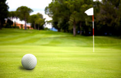 Golf ball near the putting Royalty Free Stock Image