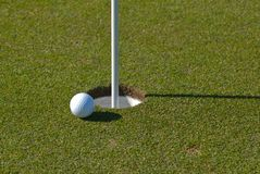 Golf ball next to cup Royalty Free Stock Image