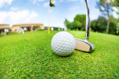 Golf ball and niblick ready to swing at course. Close-up picture of golf ball and niblick ready to swing on the putting green of course Royalty Free Stock Photos