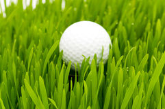 Golf ball o Stock Photography