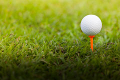 Free Golf Ball On A Tee Stock Images - 20756524