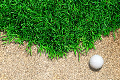 Golf Ball On Grass Royalty Free Stock Photos