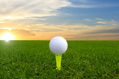 Golf Ball On Green Royalty Free Stock Photos