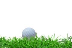 Free Golf Ball On Green Grass Stock Photos - 19763893