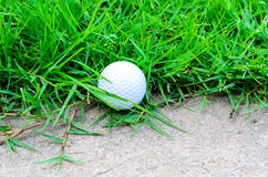 Golf ball out off fairway Stock Images