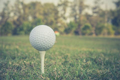 Golf ball photo vintage style. Close up of golf ball on a tee  at sunrise on frosty morning.Close up of golf ball on a tee  at sunrise on frosty morning and Royalty Free Stock Photos