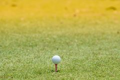 Golf ball placed on the lawn. royalty free stock image