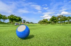 The golf ball put on green grass of golf course. Golf ball put on green grass at golf course in competition Royalty Free Stock Photos