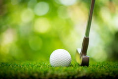 Golf ball and putter. On green Stock Photography