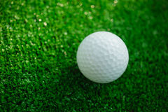 Golf ball with putter on green course. Selective focus Stock Image