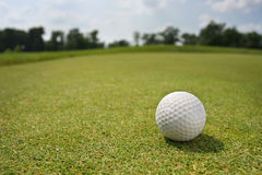 Golf Ball on Putting Green Royalty Free Stock Photo