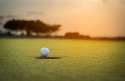 Golf ball putting on green grass near hole golf to win in game at golf course with blur background and sunlight ray. Golfer is putting golf ball on green grass royalty free stock photography
