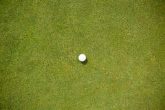 Golf ball on the putting green Royalty Free Stock Photos