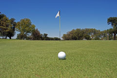 Golf ball on Putting Green Stock Images