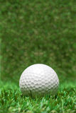 Golf ball recumbent on grass Stock Images