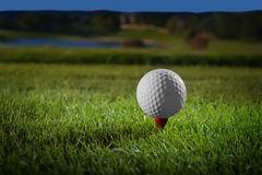 Golf ball on red tee Royalty Free Stock Image
