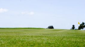 Golf ball rolling stock footage