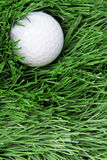 Golf ball on rough Stock Images