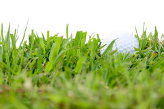 Golf ball in rough grass Stock Photography