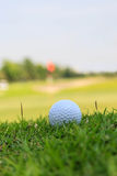 Golf ball in rough grass Stock Photo
