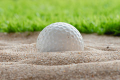 Golf ball in sand bunker near the lawn Royalty Free Stock Photo