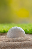 Golf ball in sand bunker near the lawn Royalty Free Stock Photos