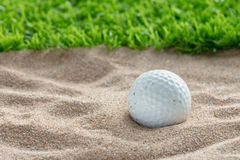Golf ball in sand bunker near the lawn Stock Images