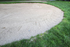 Golf Ball in Sand Trap. By Putting Green Royalty Free Stock Image