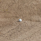 A golf ball in a sand trap Royalty Free Stock Photo