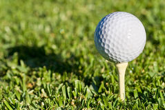 Golf ball shadow. Golf ball on a tee early in the morning casts a deep shadow of itself stock images