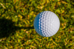 Golf ball sits on a wooden tee Royalty Free Stock Photo