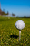 Golf ball sits on a wooden tee Stock Photography