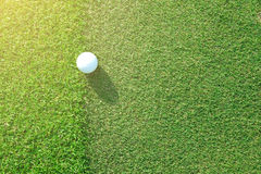 Golf ball sitting between apron fringe and green Royalty Free Stock Photo