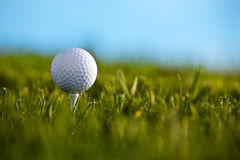 Golf ball sitting on tee with blue sky and grass b. Ackground. Ball in focus and grass out of focus Royalty Free Stock Photo