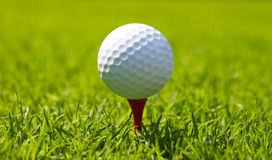 Golf ball at start. Sport and leisure on green meadow Royalty Free Stock Images