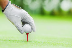 Golf ball. Start game by put the golf ball Royalty Free Stock Photo