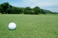 Golf-ball sur le vert Images libres de droits
