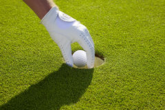Golf ball is taken from the hole Royalty Free Stock Photography