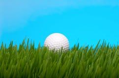 Golf ball in tall grass stock photo