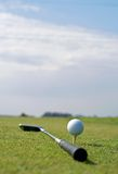 Golf ball in tall green grass Royalty Free Stock Image