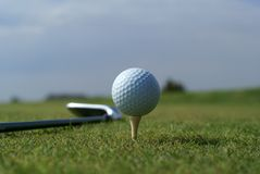 Golf ball in tall green grass against blue sky Royalty Free Stock Image