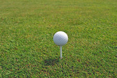 Golf ball on a tee. A white dimpled golf ball on a tee on a tee box Royalty Free Stock Image